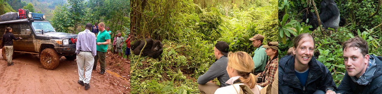 mountain-gorilla-trekking-in-uganda