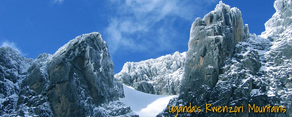 Rwenzori mountains Uganda - bwindi national park