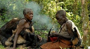 The indigenous inhabitants of Bwindi Impenetrable forest