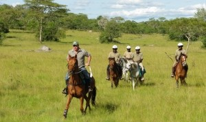 10 days Uganda gorilla safari, chimpanzee trekking & wildlife tour