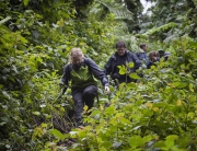 CNN Names Bwindi among 23 of the world's best hiking trails-Uganda Safari News